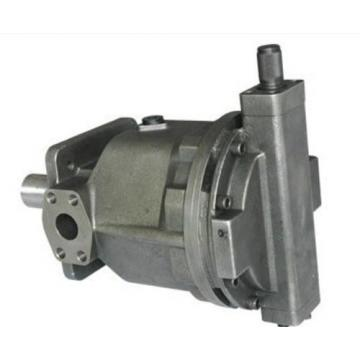 AR22-FR01C-20T Pompa idraulica