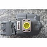 LS-G02-2CA-25-EN-645 Pompa idraulica