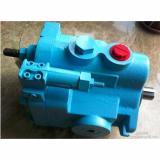 Yuken PV2R2-33-F-RAA-41 Pompa originale