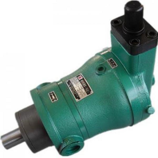 10MCY14-1B Pompa idraulica originale #2 image