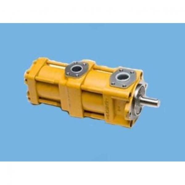 QT2323-6.3-6.3MN-S1162-A Pompa di vendita calda #2 image